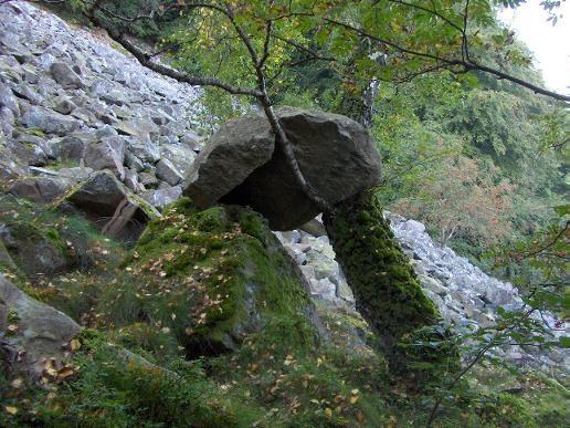 James climbing stone.JPG