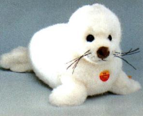 teddyseal.jpg